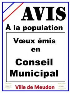 Voeux émis en Conseil Municipal voeux-en-cm-225x300